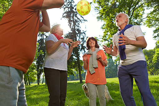 Mehr Lebensqualität im Alter mit Aktivem Brain-Training - BRAINFIT Akademie